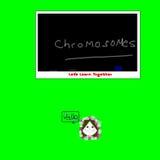 Chromosomes Illustration. Cartoon image of learning science on a chalk board stock illustration