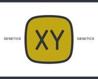 Chromosomikone für infographic, Website oder APP lizenzfreie abbildung