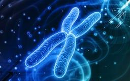 Chromosoom stock illustratie