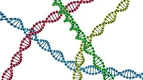 chromosoom 3d geef geïsoleerd terug Royalty-vrije Stock Afbeelding