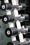 chromu dumbbells rząd Obraz Stock