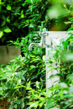 Chromu faucet Zdjęcie Royalty Free