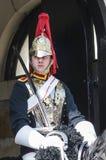 chroni końskiego portreta królewskiego typowego mundur Obraz Stock