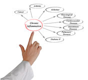 Chronic Inflammation. Presenting diagram of Chronic Inflammation Royalty Free Stock Photography