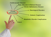 Chronic Inflammation. Presenting Diagram of Chronic Inflammation Royalty Free Stock Photos