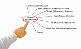 Chronic Inflammation. Presenting diagram of Chronic Inflammation Stock Images