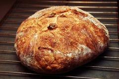 chrupiąca świeży chleb Fotografia Royalty Free
