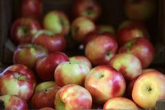 Chrupiący jabłka w skrzynce obraz stock
