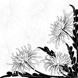 Chrysant stock illustratie
