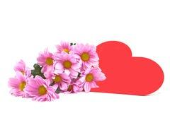 Chrysant en het hart. Royalty-vrije Stock Fotografie
