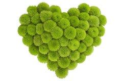 Chrysant in liefdevorm Royalty-vrije Stock Fotografie