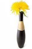Chrysant in vaas stock foto's