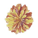 Chrysantenbloem in de vorm van illustraties vector illustratie