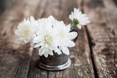 Chrysanthème de fleurs blanches sur le Tableau en bois Images stock