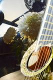 Chrysanthème et musique Photos stock