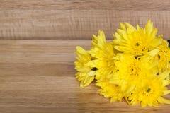 Chrysanthème jaune de fleur sur le blackground en bois Image stock