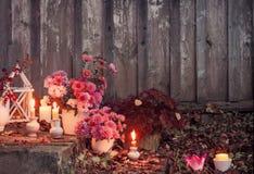 Chrysanthèmes avec les bougies brûlantes dans le jardin d'automne photo stock