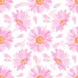 chrysantheme Nahtloses Blumenmuster Stockfotografie