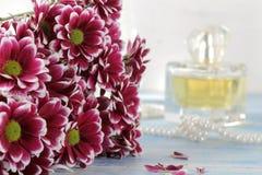 Chrysantheme und Parfüm im Hintergrund auf einem blauen Holztisch stockfotografie