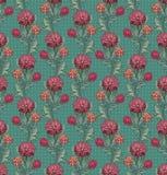 Chrysanthememuster Stockfoto