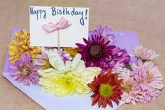 Chrysanthemen blüht im violetten Umschlag mit glücklicher Glückwunschkarte i Stockfoto
