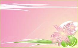 Chrysanthemen. Dekorativer mit Blumenhintergrund für c lizenzfreie abbildung