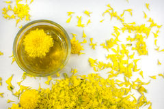 Chrysanthementee stockfoto