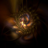 Chrysanthemum. Abstract fractal image resembling a chrysanthemum Stock Photo