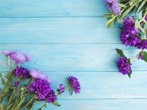 Chrysanthemum Beautiful Bell Romantic Season On Wooden Frame Autumn Background Stock Photography