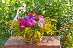 Chrysanthemum bouquet Stock Photography
