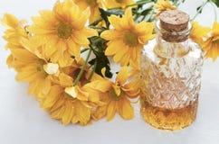 Chrysanthemum daisy flower essential oil tincture. Chrysanthemum daisy flower essential oil tincture bottle on the white wooden table background. Herbal stock photo