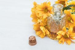 Chrysanthemum daisy flower essential oil tincture. Chrysanthemum daisy flower essential oil tincture bottle on the white wooden table background with copy space stock images
