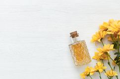 Chrysanthemum daisy flower essential oil tincture. Chrysanthemum daisy flower essential oil tincture bottle on the white wooden table background with copy space royalty free stock photography