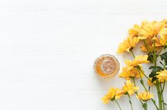Chrysanthemum daisy flower essential oil tincture. Chrysanthemum daisy flower essential oil tincture bottle on the white wooden table background with copy space stock photography