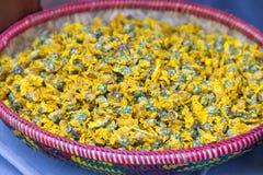 Chrysanthemum dried Royalty Free Stock Image