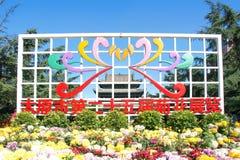 Chrysanthemum Exhibition Royalty Free Stock Photography