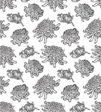 Chrysanthemum flower blossoms seamless pattern. Royalty Free Stock Image
