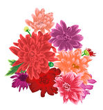 Chrysanthemum flower bouquet isolated on white background. Vector illusrtation Royalty Free Stock Images