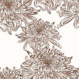Chrysanthemum flower brown sepia outline seamless pattern on beige background. Seamless vector background. Vintage illustration. Blooming tree. Brown vector illustration