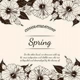 Chrysanthemum flower card by hand drawing Stock Photos