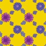 Chrysanthemum flower design element. Stock Photography