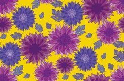 Chrysanthemum flower design element. Stock Image