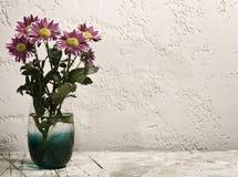 Chrysanthemum flower on the desk Stock Image