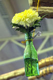 Chrysanthemum flower in diy hanging glass bottle for vase Stock Images