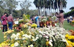 Chrysanthemum flower exhibition in Bhopal Stock Photo