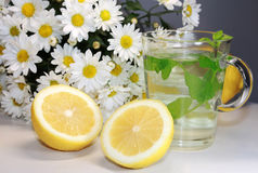 Chrysanthemum flower tea and lemon Royalty Free Stock Images