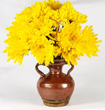 Chrysanthemum flower vase Royalty Free Stock Photos