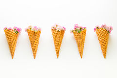 Chrysanthemum  flowers in the ice cream waffle cones. Royalty Free Stock Photo