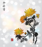 Chrysanthemum flowers on white glowing background. Traditional oriental ink painting sumi-e, u-sin, go-hua. Royalty Free Stock Photography