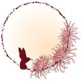 Chrysanthemum frame Stock Images